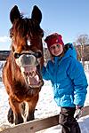KA_110305_1118 / Equus caballus / Hest