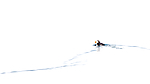 KA_140616_5440-2 / Fratercula arctica / Lunde