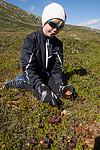 SIG_9459 / Rubus chamaemorus / Molte