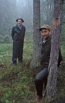 bb159 / Picea abies / Gran