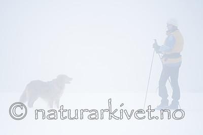 BB_20170401_0246 / Canis lupus familiaris / Hund