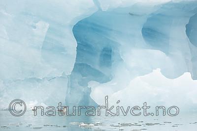 KA_140610_2115 / Fulmarus glacialis / Havhest <br /> Rissa tridactyla / Krykkje